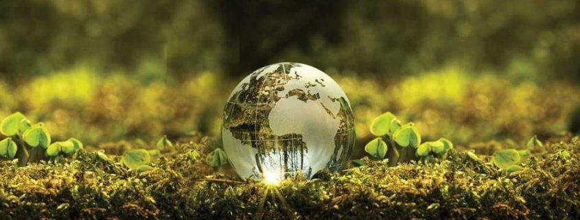 reusables have a green advantage